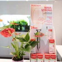 Mava strong - feetness gmbh